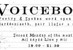 voicebox poster