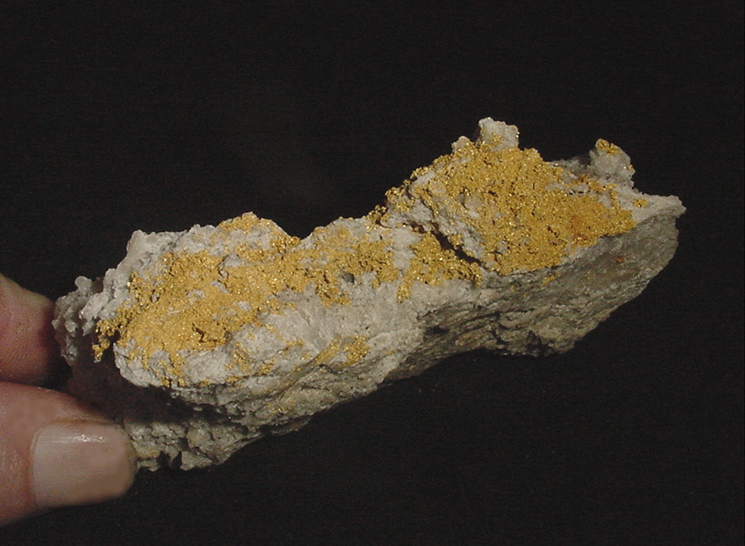 This Rock Hails From Pamlico -- From Newrange Gold