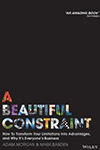 Beautiful-constraint