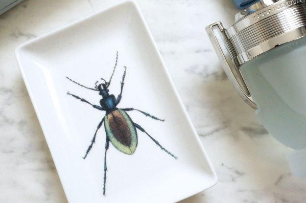 beetle-trinket-tray