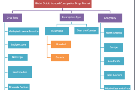 Opioid Induced Constipation (OIC) Drugs Market: Global Industry Opportunities, Size, Share, Industry Outlook and Strategies 2018 to 2026