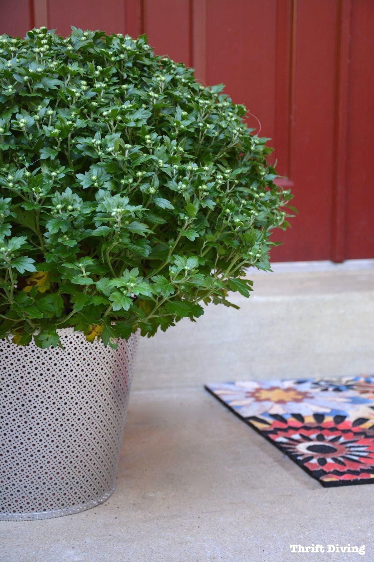 Snazzy Faces Garden Arch Planters Diy Metal Garden Planters How To Make Your Own Diy Garden Planters From Metal Garden Planters garden Garden With Planters