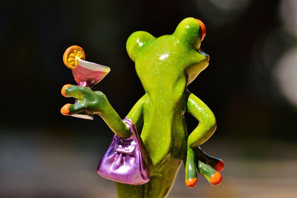 frog-881658_1920