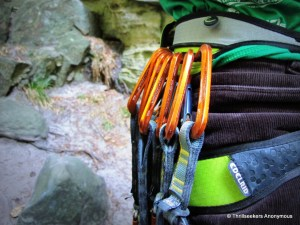 Edelrid Loopo Gear Loop