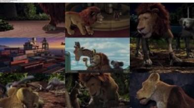 Download Subtitle indoThe Wild (2006) BluRay 1080p