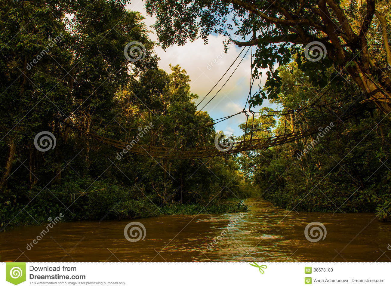 Evening Landscape Of Forests And Mesh  Kinabatangan River     Download Evening Landscape Of Forests And Mesh  Kinabatangan River   Rainforest Of Borneo Island