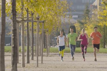 Intersport Running