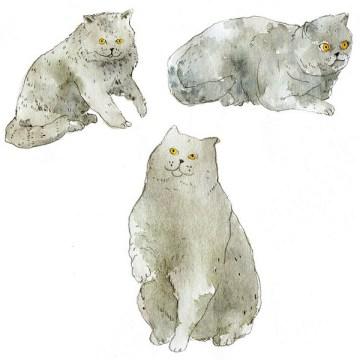 Vikki Chu cat illustration