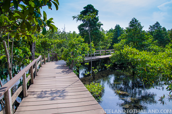 Nature trail things to do in krabi thailand