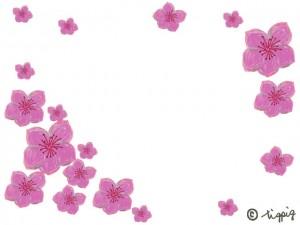 大人可愛い桃の花のイラスト