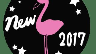 フラミンゴのピンクのシルエットと2017 NEW の手書き文字と星のラベル:600×600pix