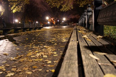 Autumn Night in Central Park