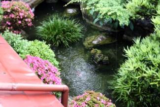 Japan - Traditional Tokyo Hostel (5)