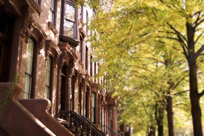 Brooklyn Seasons (3)