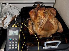 Thanksgiving 2010-4