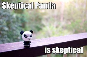 Skeptical Panda
