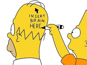 Insert Brain Here