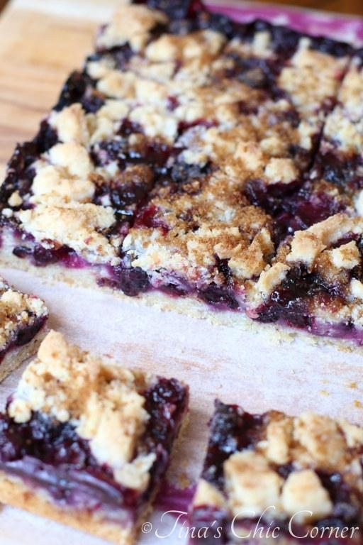Blueberry Crumb Bars04