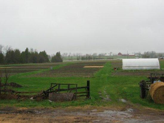 Gloomy, but wet