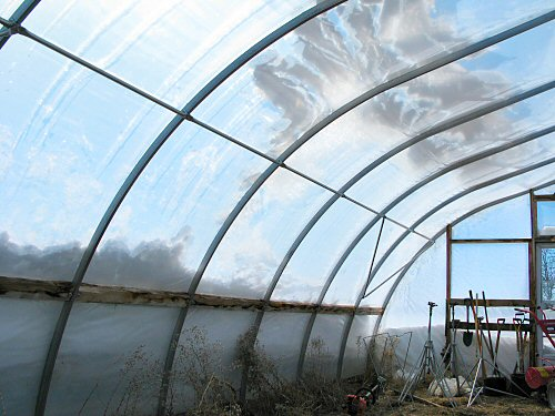 Greenhouse after the (latest) storm