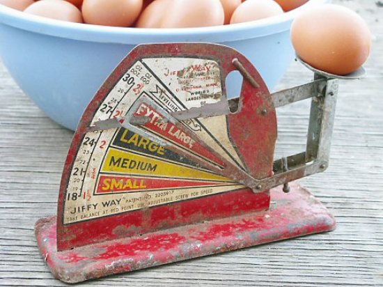 Egg scale