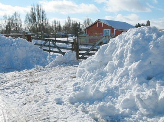 Snow banks