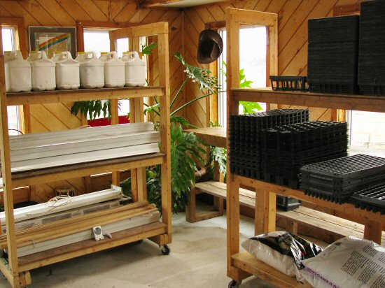 Seedling room set-up