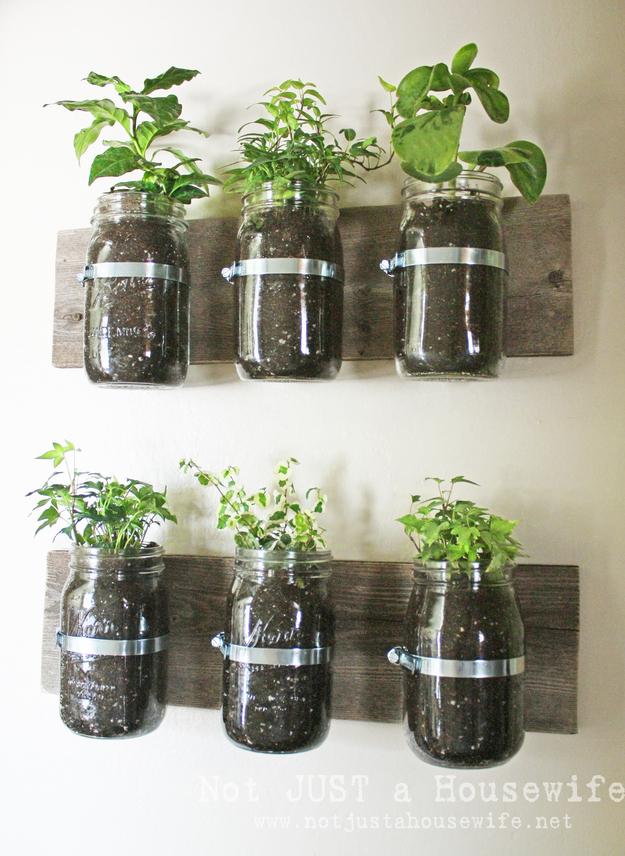 Jar Wall Planters