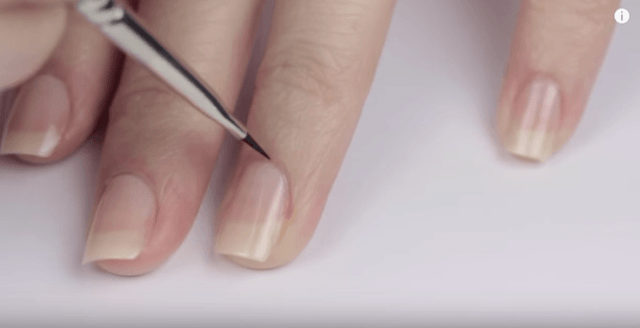Perfect Cuticles