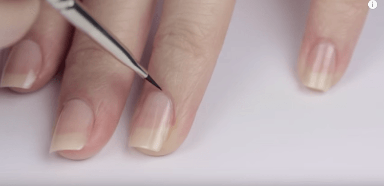 Perfect Cuticles