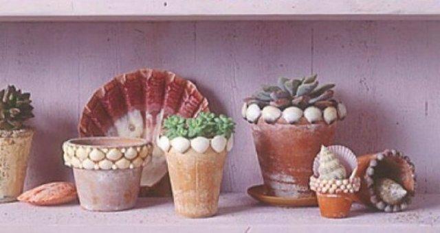 Seashells glued to weathered terra cotta flower pot