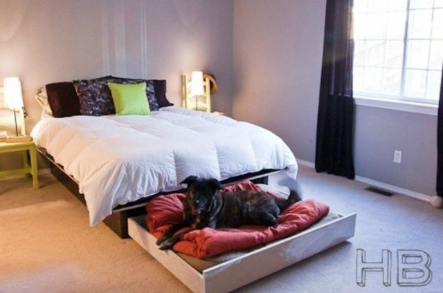 Trundle Dog Bed