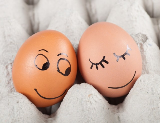 two funny smiling eggs