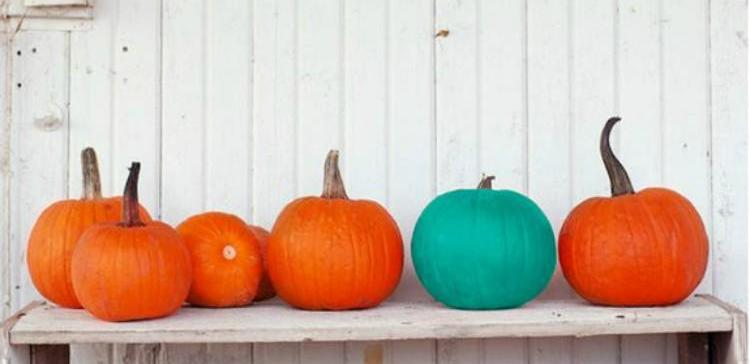 What it means if you see a teal pumpkin at someone's house.