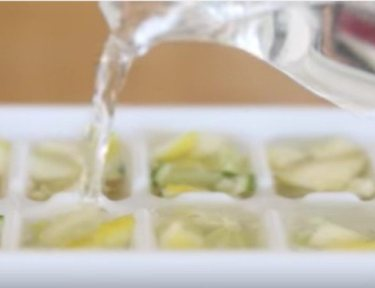 pitcher of vinegar poured over citrus ice cubes