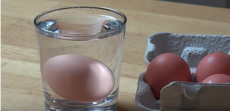 egg floating in a glass of water