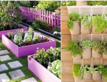 split image of two DIY gardens