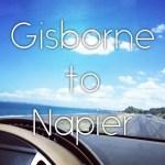 【NZ】ニュージーランド・ノマドツアー その2 ギズボーン→ネイピア 風邪でダウンの1週間