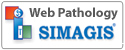 simagis-live-web-pathology
