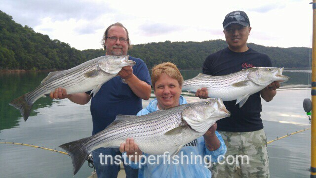 Norris lake day 3 with clarence katie and tim 7 8 2015 for Norris lake fishing