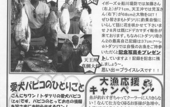 Vol.1(2011.8)ど~だ!トダツリ情報