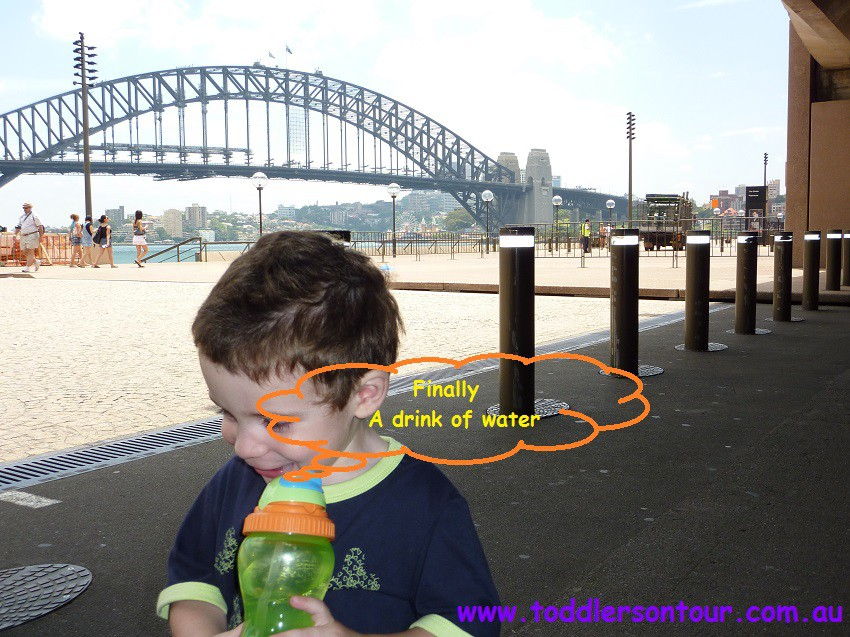 sightseeing Sydney harbour bridge
