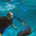 Philip Peters in Live Shark Encounter, Image courtesy of Haai, Inc.
