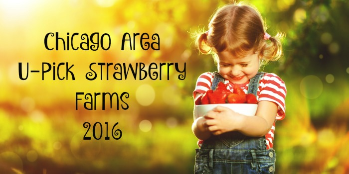 Chicago Area U-Pick Strawberry Farms 2016