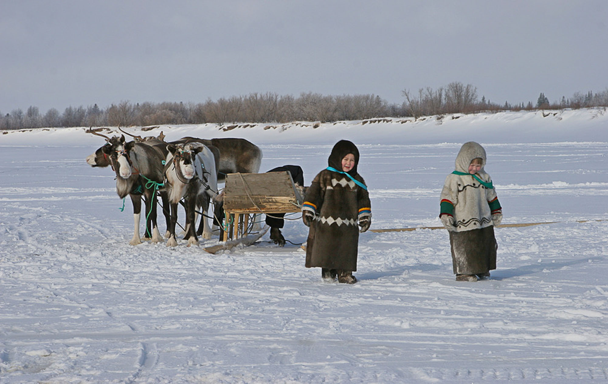 Nenets People (Russia)