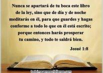 La importancia de leer la Biblia: Nunca se apartará de tu boca este libro de la ley