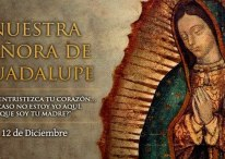Imágenes de la Vírgen de Guadalupe