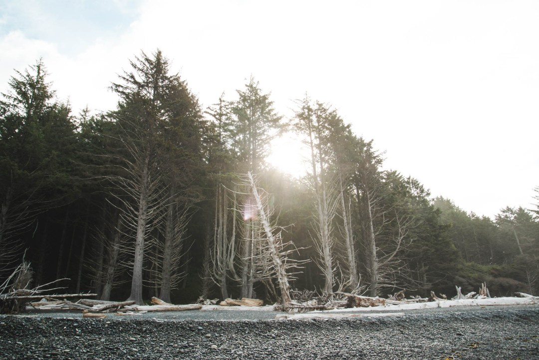 Early morning on Rialto Beach