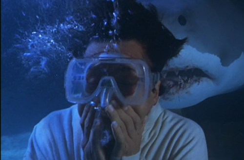 shark jackie chan