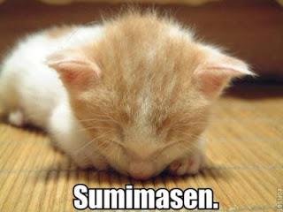 sumimasen_large